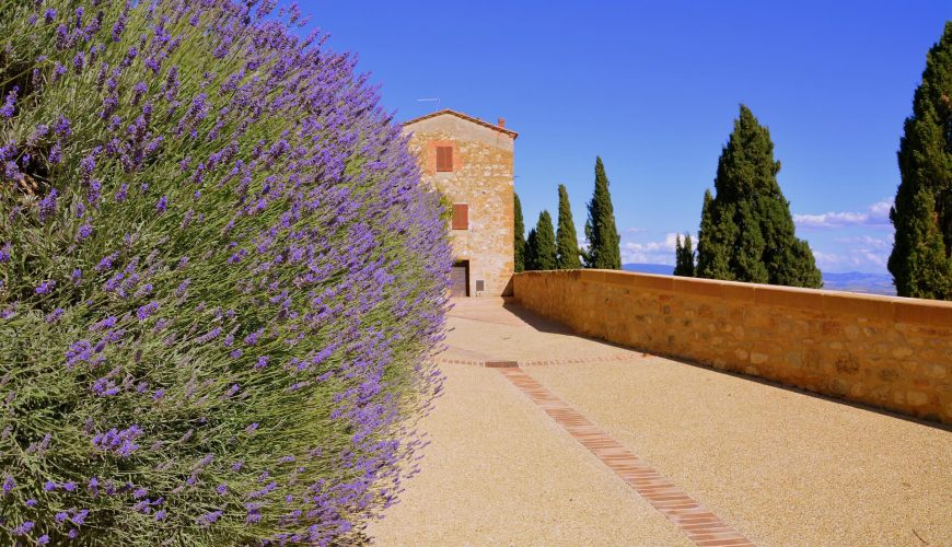 Magnificent Tuscany - Discover Pienza and Bagno Vignoni the two gems of the Val d'Orcia